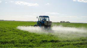 Pour comprendre l'augmentation de la consommation de pesticides par l'agriculture