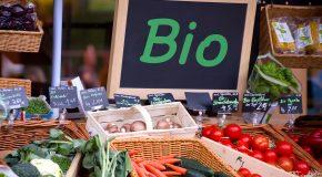 Où achetez vous vos produits bio ?
