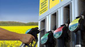 Les biocarburants, comment ? A quel coût environnemental ?